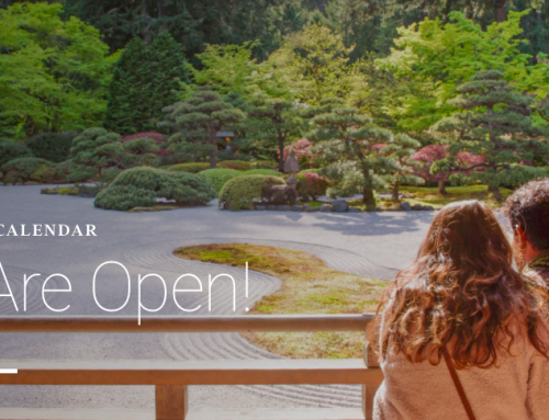 The Portland Japanese Garden Re-Opens