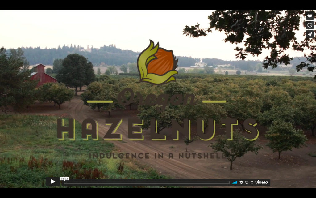 Hazelnut Fun Factoids